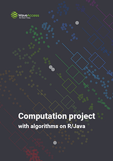 Computation project with algorithms on R/Java